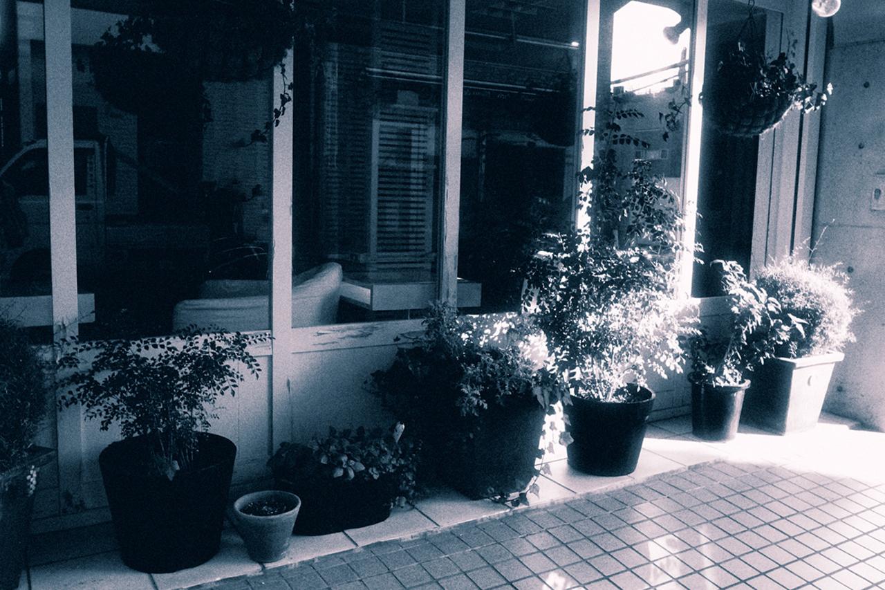 秋天的早晨